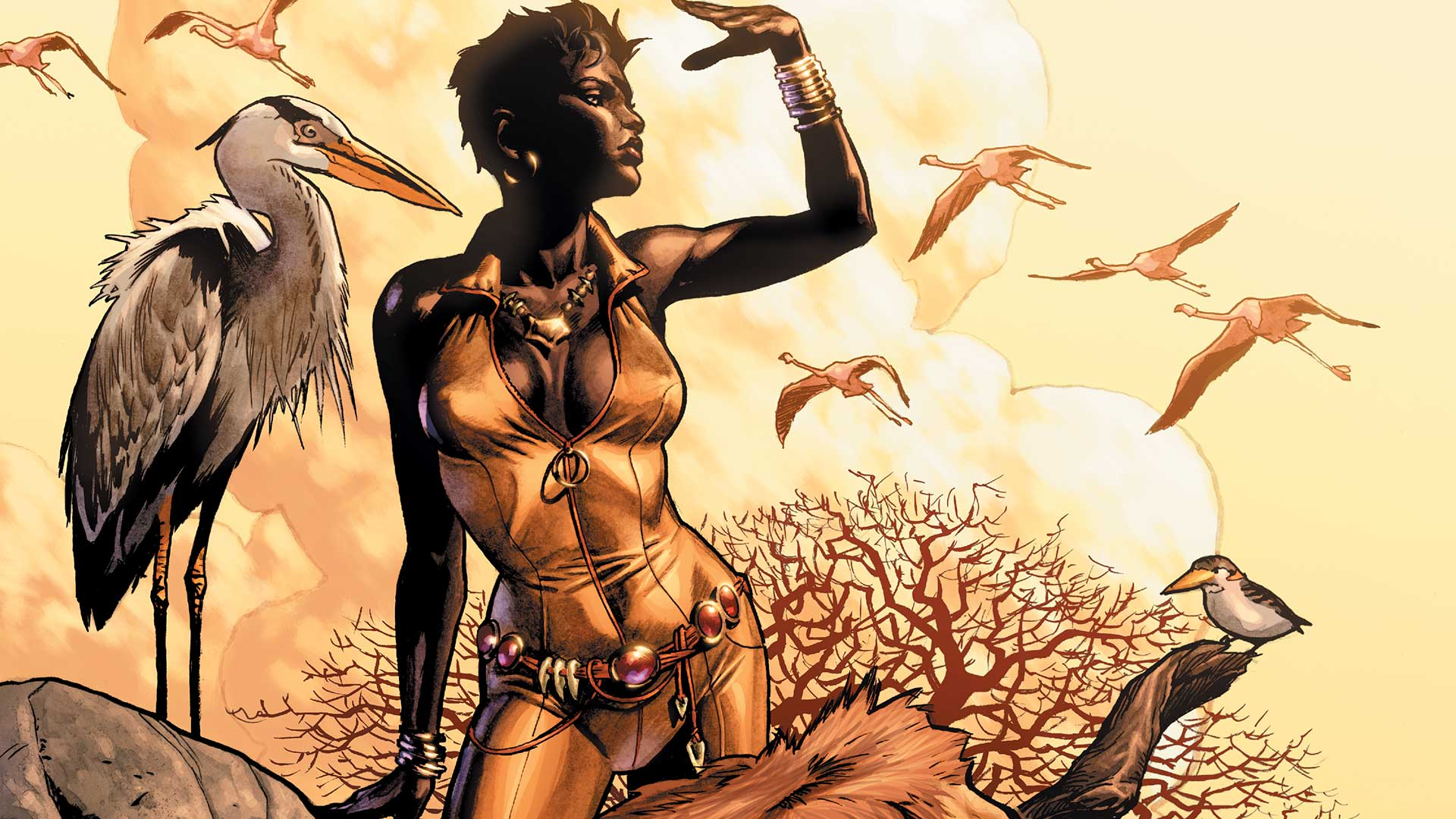 Image result for vixen dc