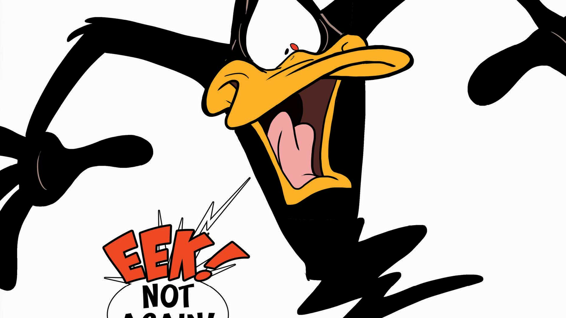 The Looney Tunes Images  Collection 16 Wallpapers
