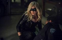 Arrow: Caity Lotz Flies as the Canary
