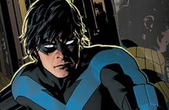 The Nightwing 101 Sale